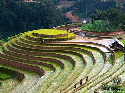 休闲农业、互联网+农业