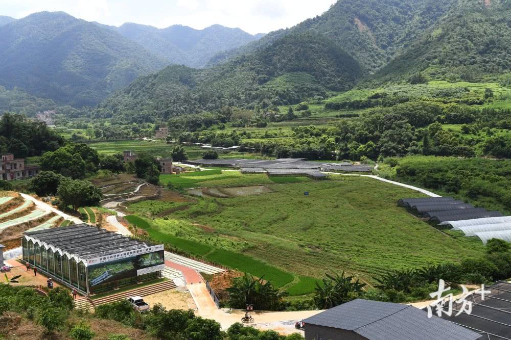 云城区全面启动国家现代农业产业园建设