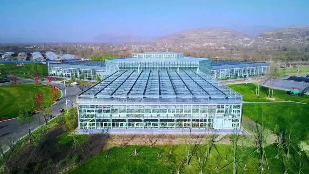 粤桂共建现代农业产业园