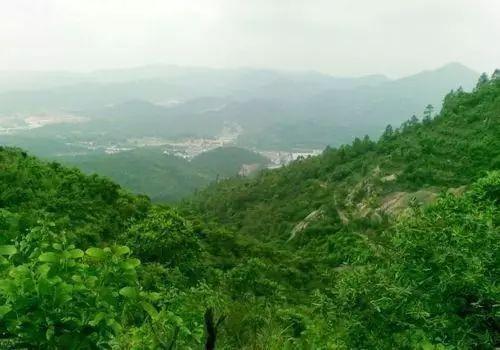 地方动态:组团发展背景下的五桂山长命水特色小镇建设