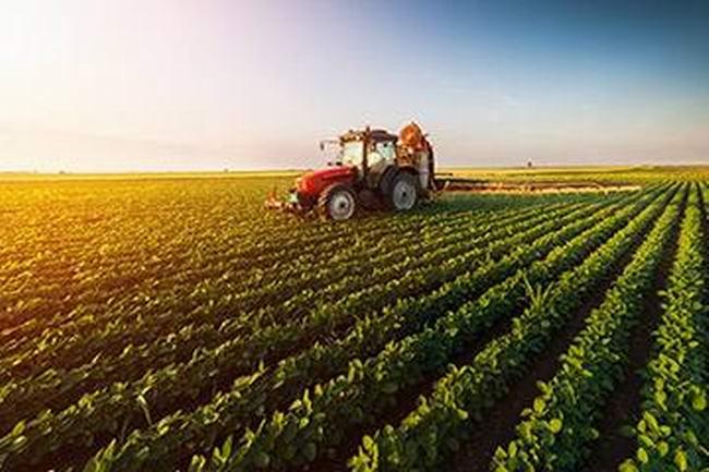 绿色农业发展
