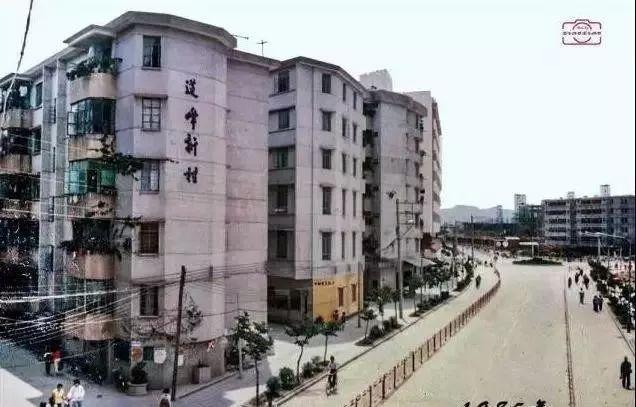 莲峰新村中山第一个住宅小区
