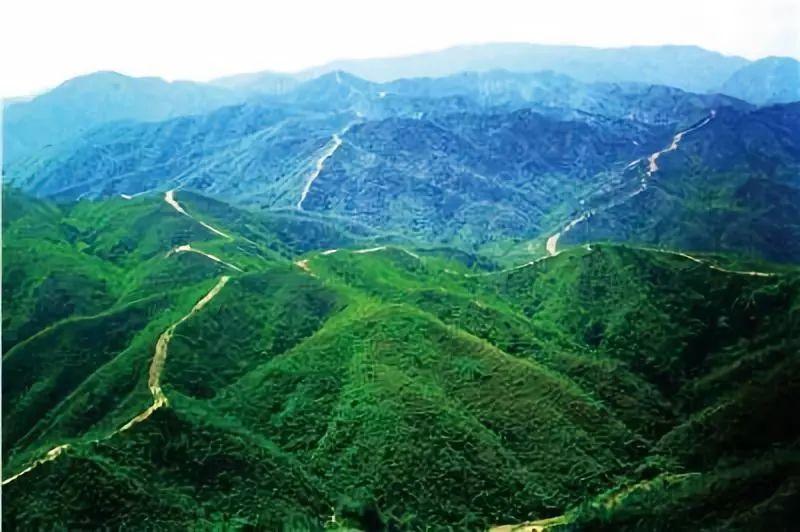 """2005年中山获得""""全国社会治安综合治理优秀地市,长安杯,是广东省唯一获得该项殊荣的城市。"""