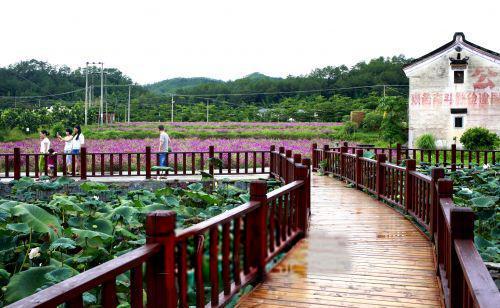 乡村旅游交通设施升级