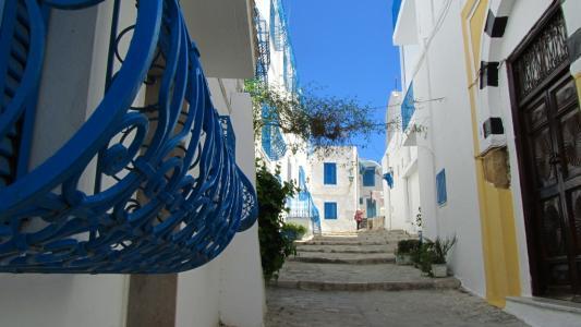 突尼斯-蓝白小镇