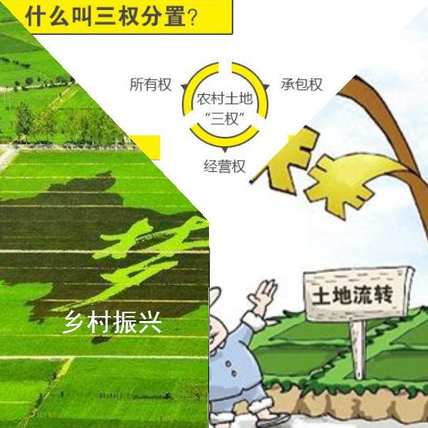 生态农场地产